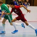 Wiesmann-SHK Cup 18